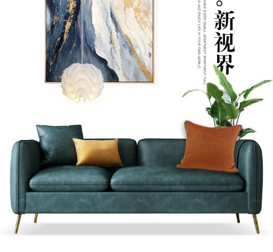 轻奢小户型北欧科技布沙发简约现代客厅公寓家具三人位布艺可拆洗